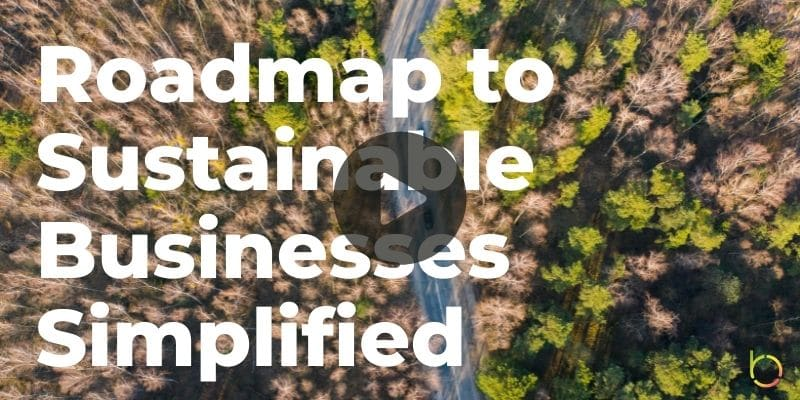 Roadmap to Sustainable Businesses Simplified